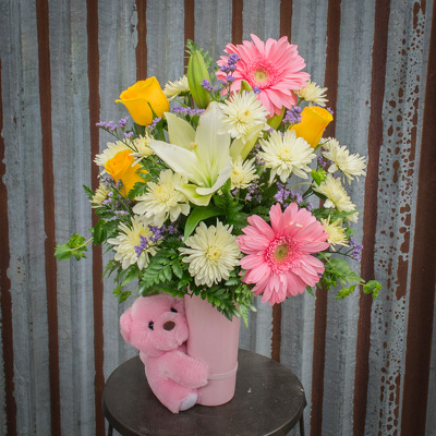 Big Hug - Baby Girl from Marion Flower Shop in Marion, OH