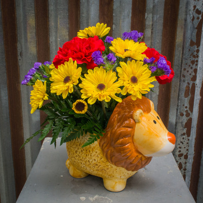 Baby Lion from Marion Flower Shop in Marion, OH